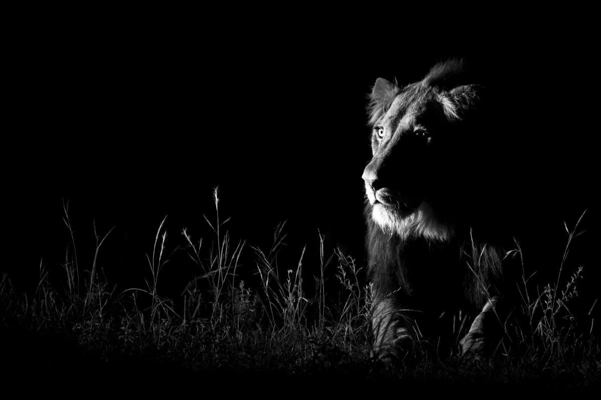 Zdjęcie w ciemności