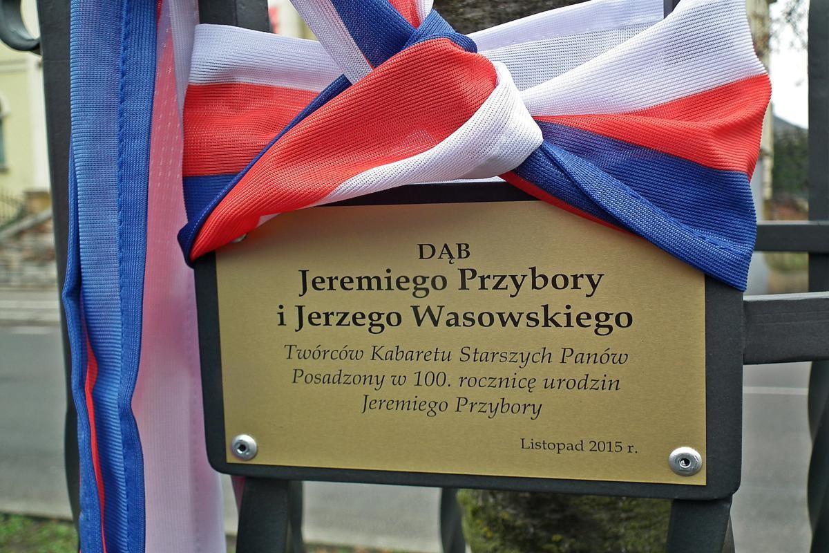 Dąb Jeremiego Przybory i Jerzego Wasowskiego