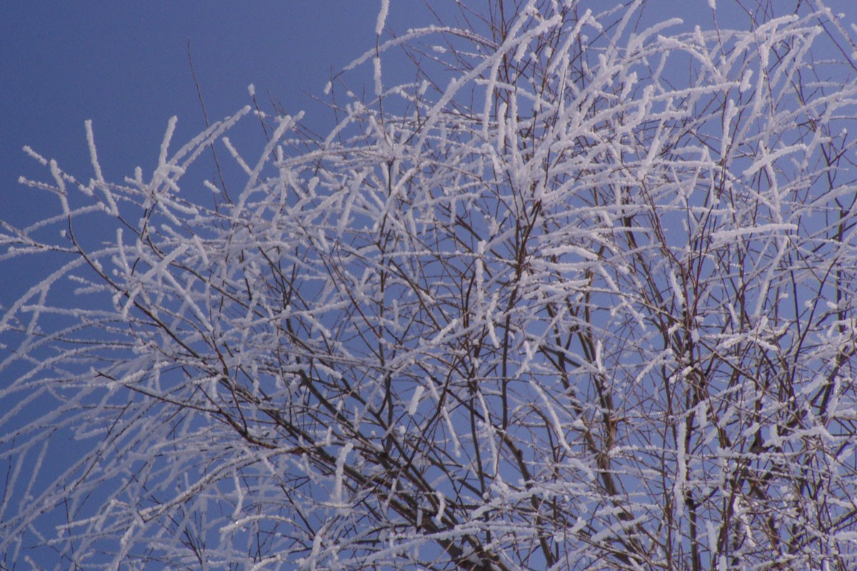 śnieg Bydgoszcz