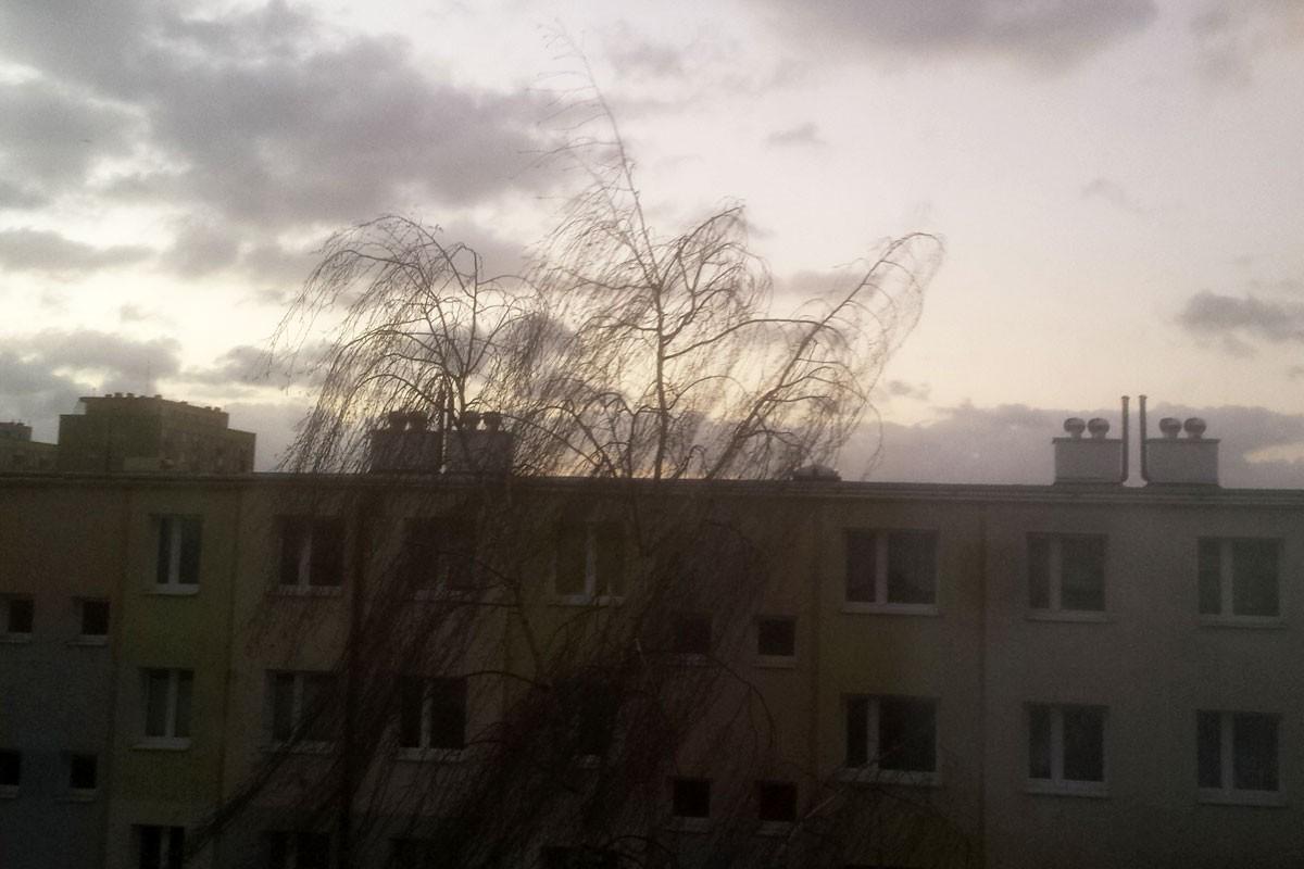wiatr_bydgoszcz