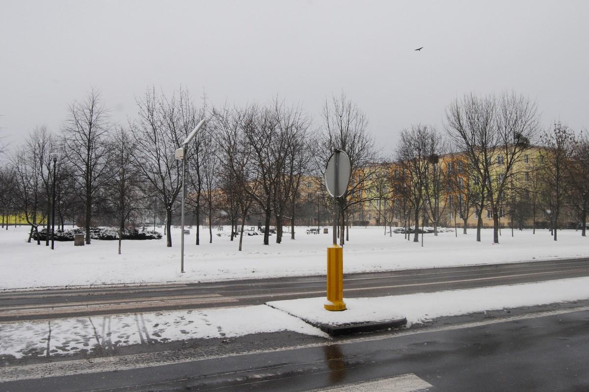 Skwer przy Dwernickiego - LG (1)