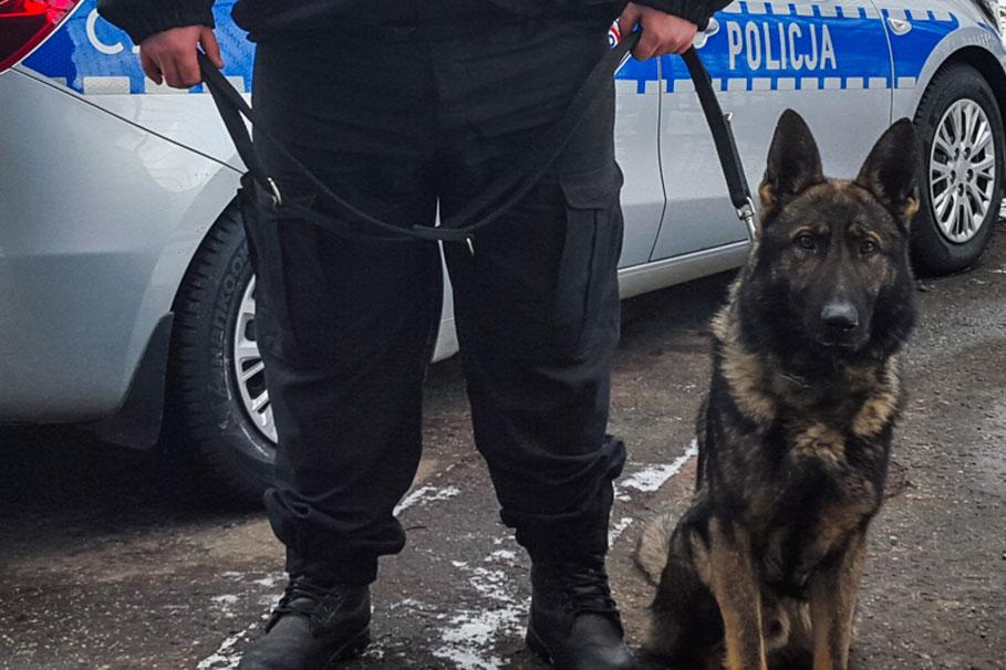 juks_policja