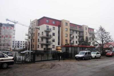 Dębowa Ostoja - LG (3)