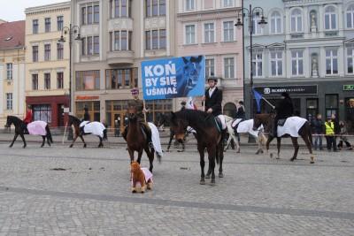 Konna manifestacja na Starym Rynku - LG (18)