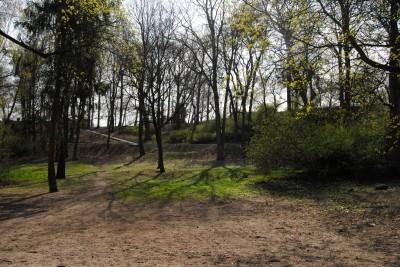 Park Henryka Dąbrowskiego, Wzgórze Dąbrowskiego - LG (1)