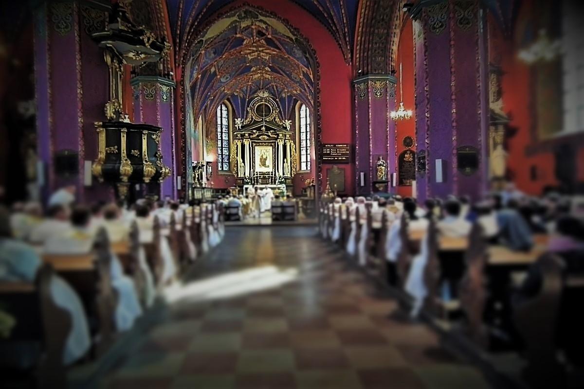 bydgoska katedra