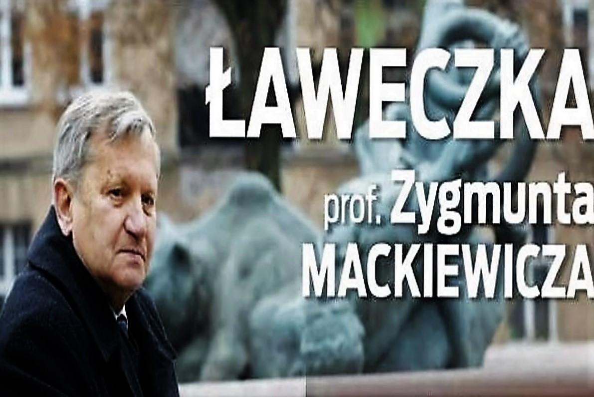 laweczka_Prof_Mackiewicza_1200x800