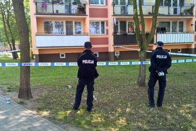 policja_wypadek_swiecie