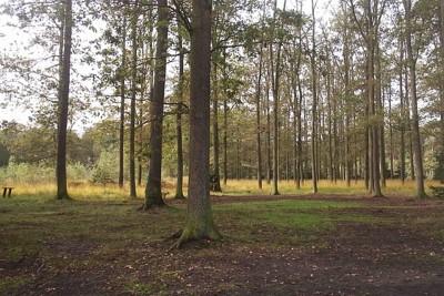 las bydgoszcz