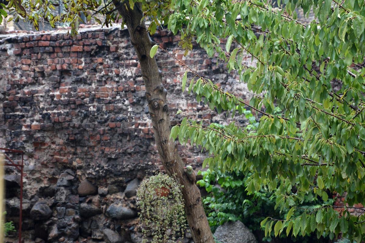 Zabytkowy mur obronny będzie odrestaurowany i wyeksponowany (Copy)