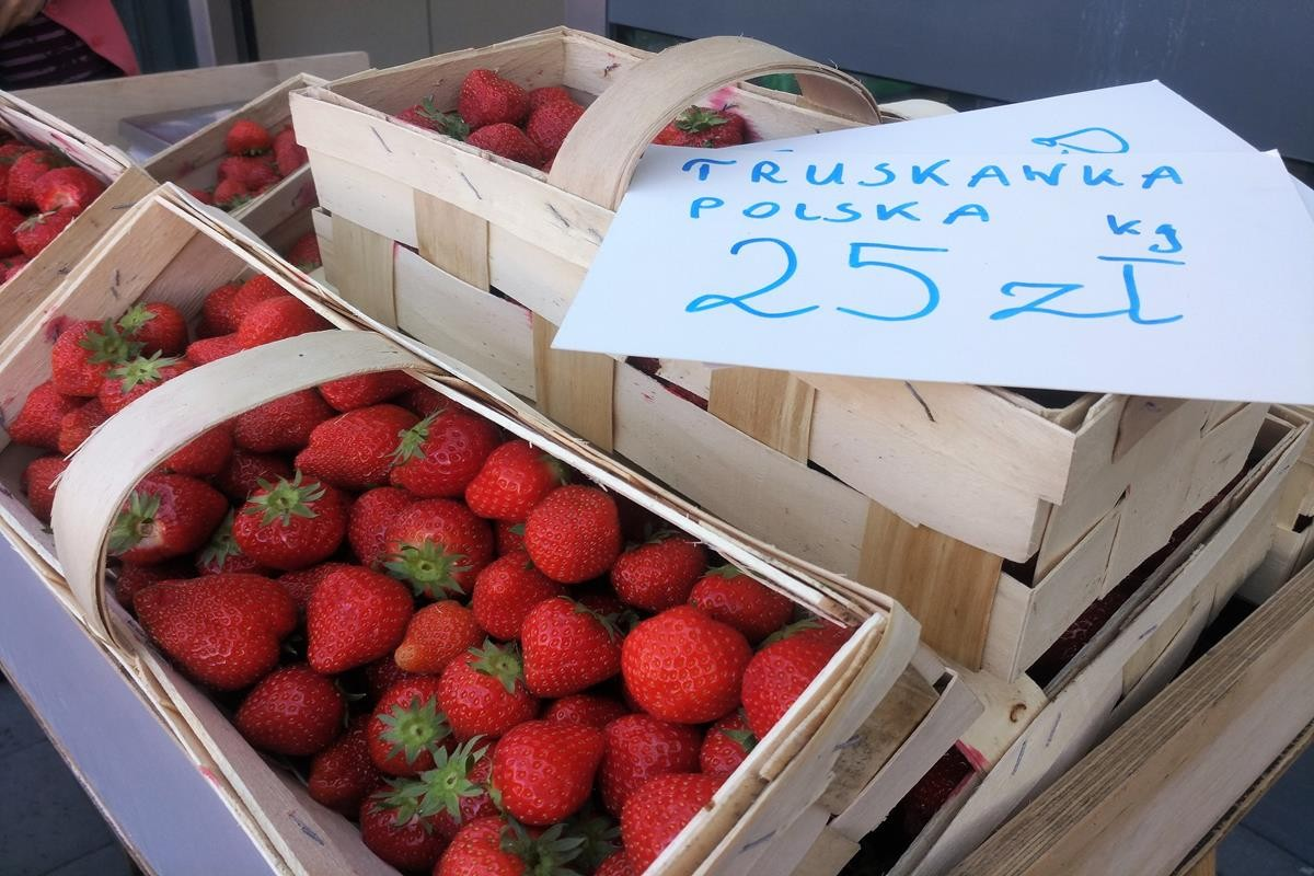 Pierwsze polskie truskawki