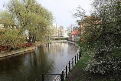 Archiwum Tagu Dywany Kwiatowe Wyspa Młyńska Bydgoszcz