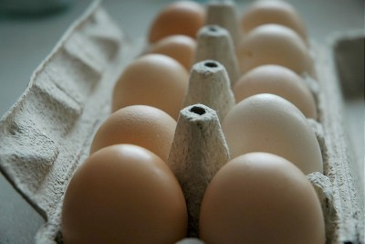 jajka skażone