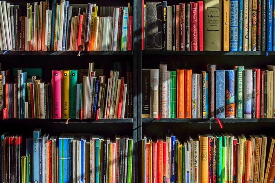 biblioteka - umb