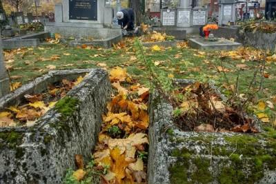 Cmentarz Starofarny_SG (33)
