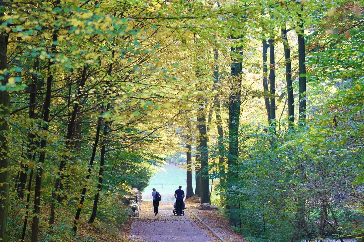 Jesień w Myślęcinku_SG (13)
