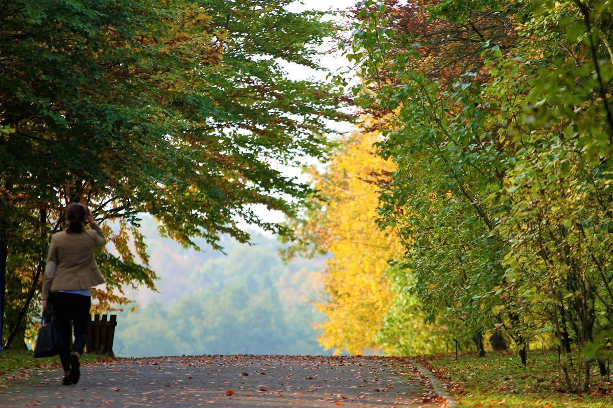 Jesień w Myślęcinku_SG (8)