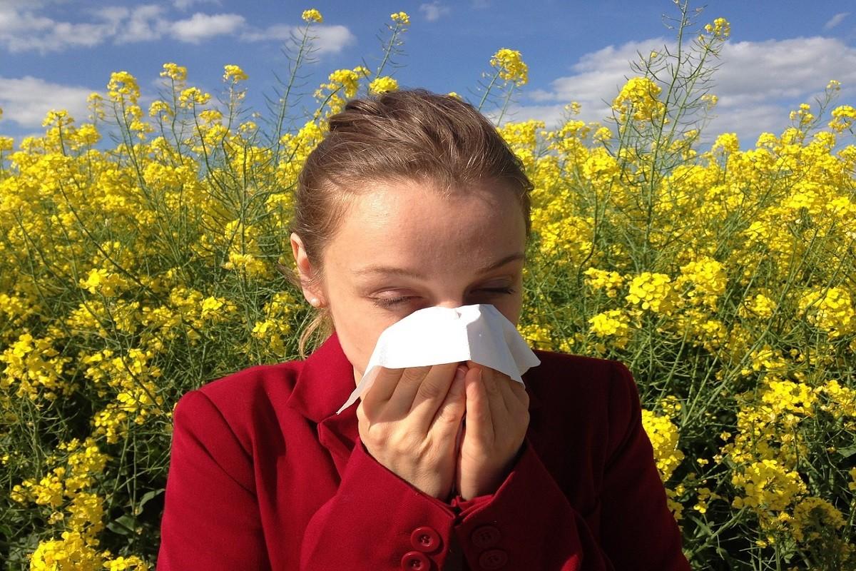 Alergik cierpi