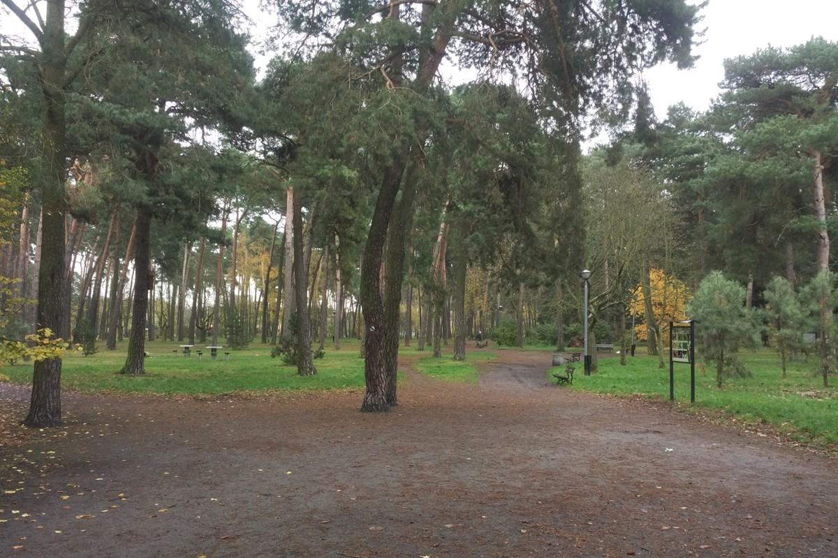 park załuskiego, czerkaskiego (1)