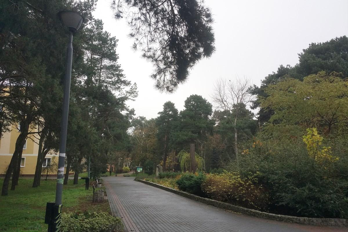 park załuskiego, czerkaskiego (2)