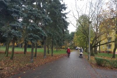 park załuskiego, czerkaskiego (3)
