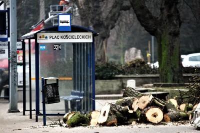plac_koscieleckich_wycinka_drzewa_zima_SG