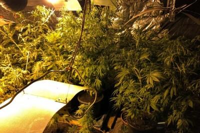 zabezpieczone narkotyki 1_policja_cbśp