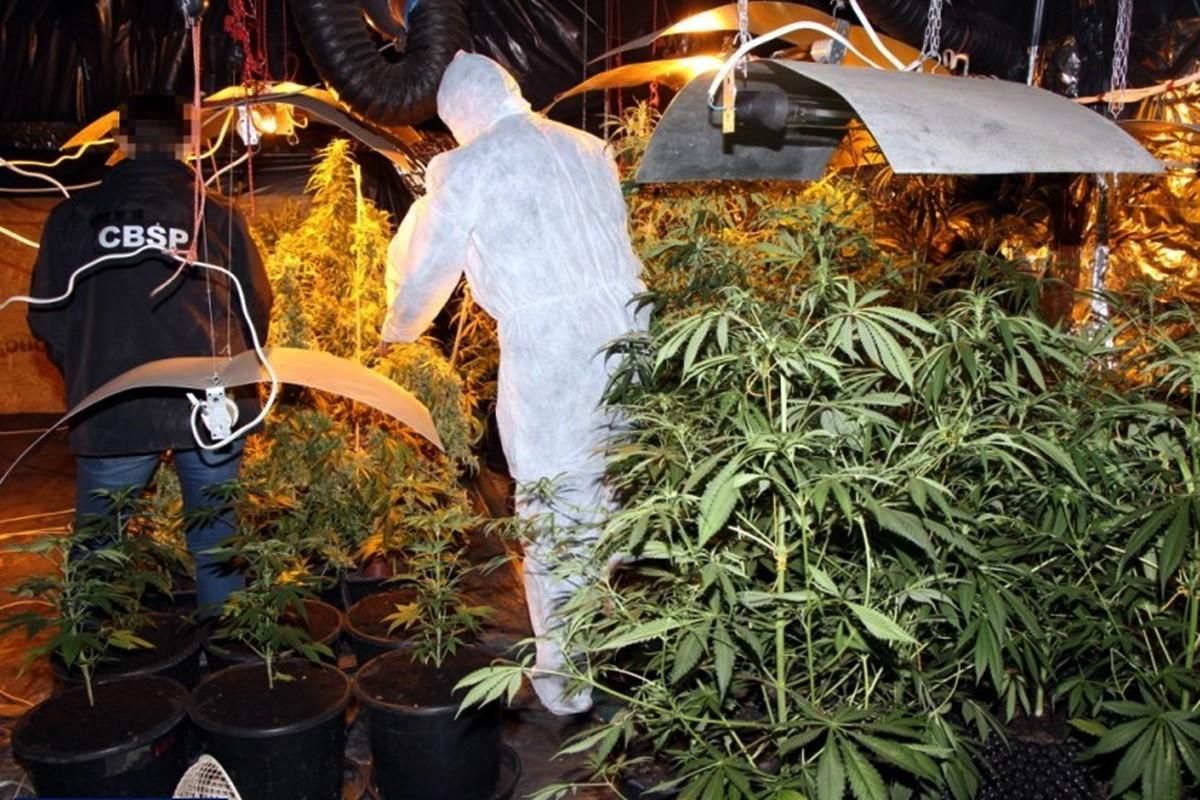 zabezpieczone narkotyki_policja_cbśp