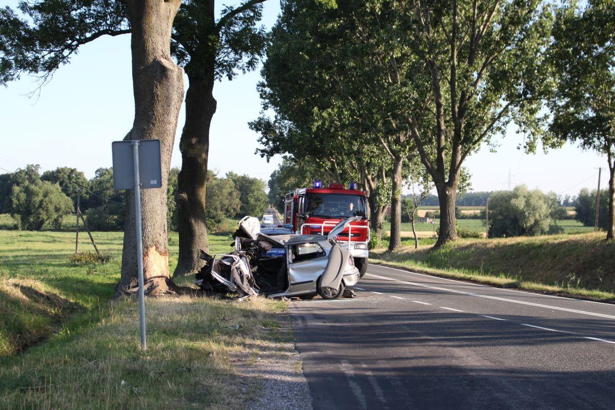 śmiertelny wypadek_ DK62 k. Kruszwicy_ KPP Inowrocław-3