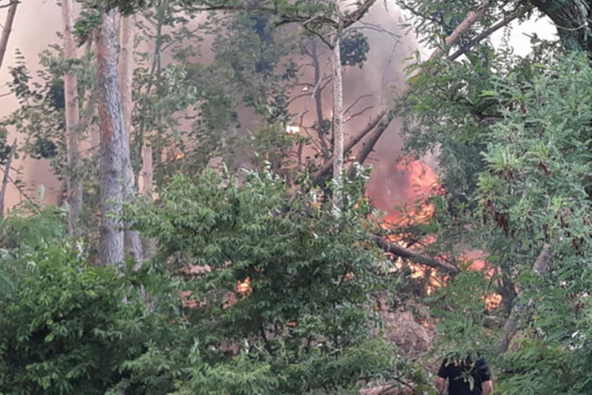 pożar lasu_annowo_ Maciej Rejment