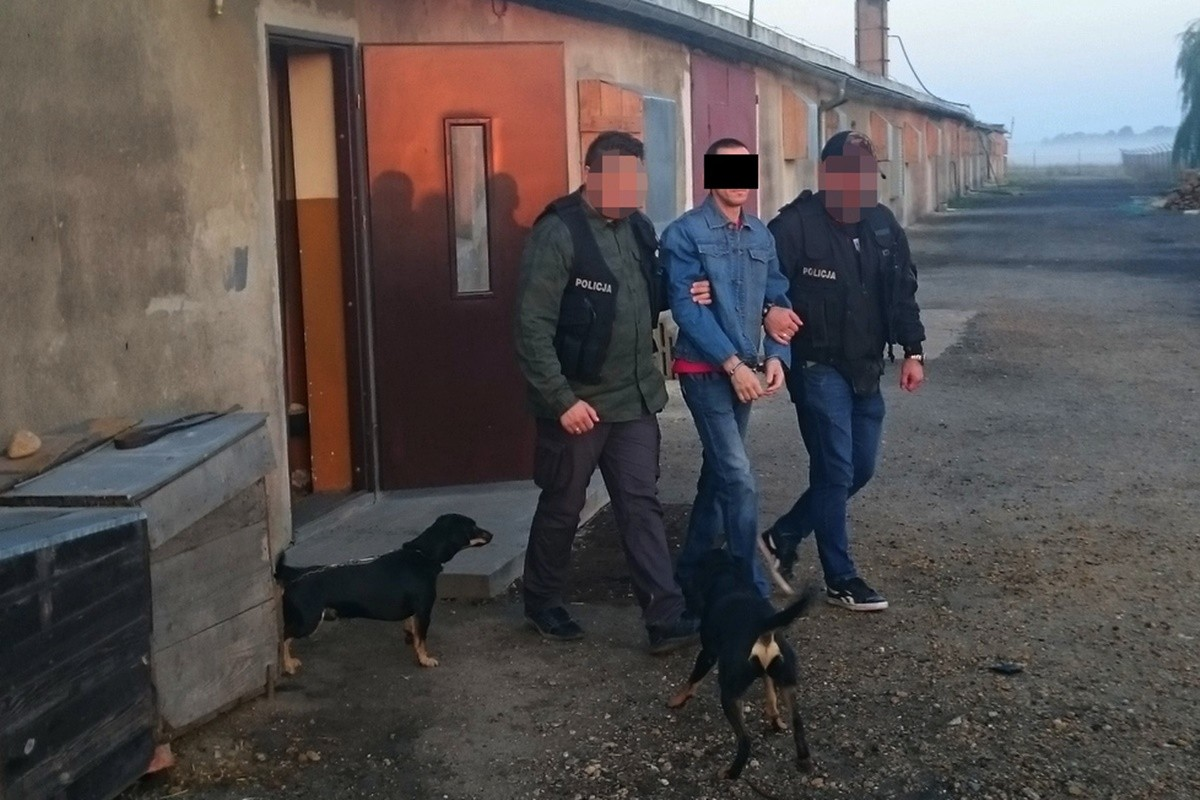 zatrzymany 45-latek_ zatrzymanie w Legnicy_ KWP Bydgoszcz