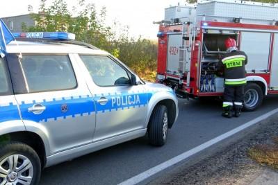 policja, straż pożarna_ na sygnale - MR