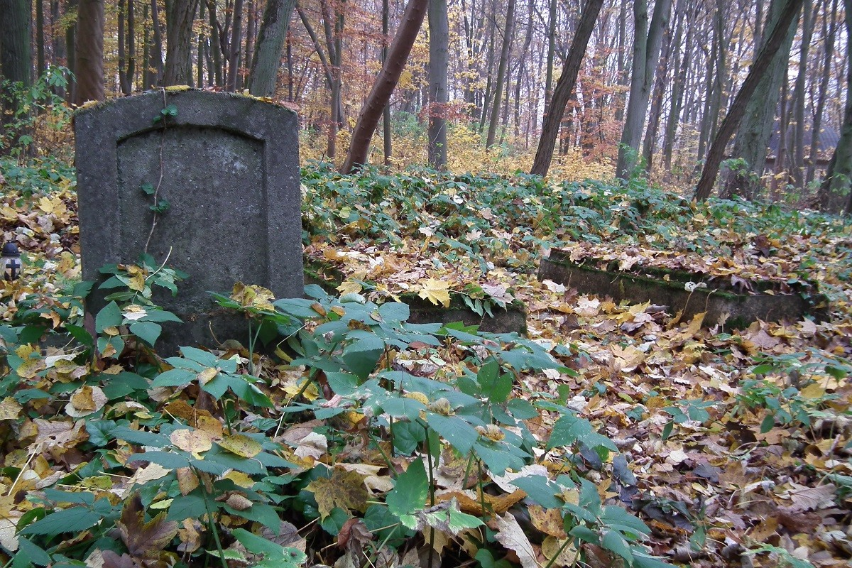 Stary cmentarz 2