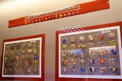 Wystawa odznak1