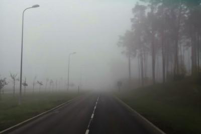8-11-2019_ mgła, droga, bydgoskich przemysłowców - JS
