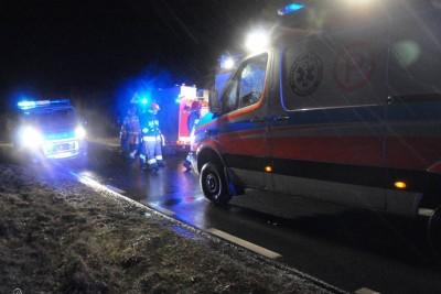 ambulans, straż pożarna, policja_ na sygnale - MR