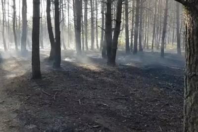 pożar fordon