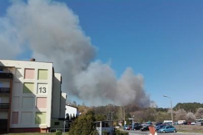 pożar lasu, trawy - Fordon Bydgoszcz - BB