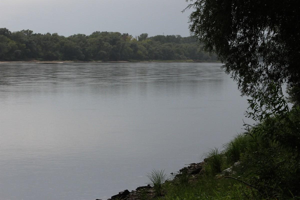 4-08-2019 - Stan rzeki Wisła - Fordon Bydgoszcz - SF (11)