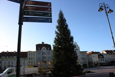 29-11-2019_ choinka, Stary Rynek Bydgoszcz - SF (4)
