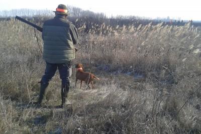 polowania bydgoszcz