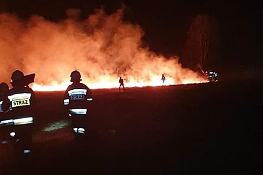 21-03-2020_ półwysep Potrzymiech, pożar - OSP Jeziora Wielkie