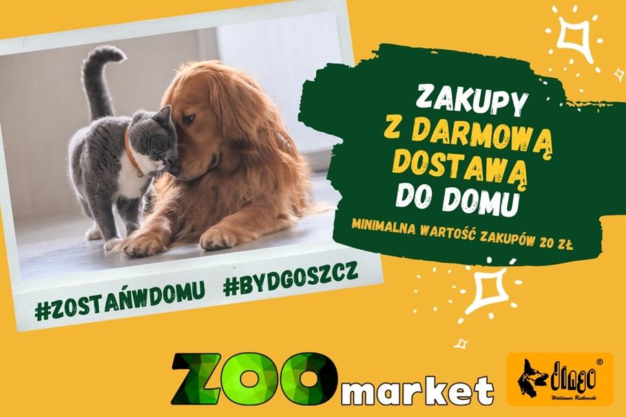 #zostanwdomu zoomarket Bydgoszcz (1)
