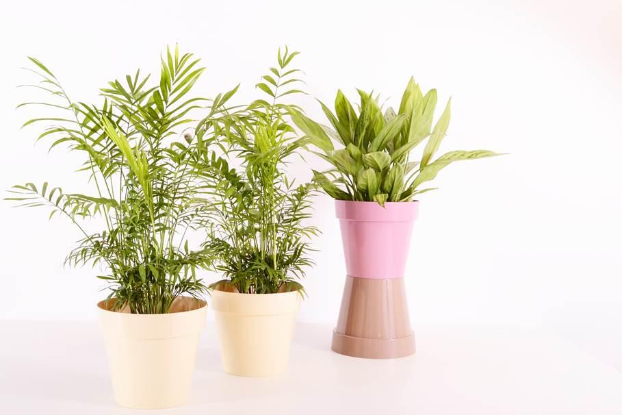 sztuczne rośliny doniczkowe