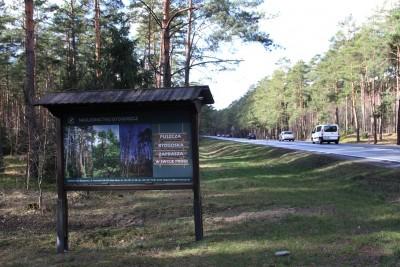 DK10_ S10_ Puszcza Bydgoska_ tablica - SF-1