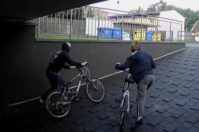 kradzież skorupki Bydgoszcz