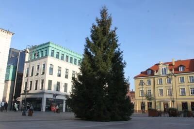 25-11-2020_choinka_Stary Rynek Bydgoszcz - SF (5)