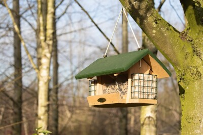 A closeup shot of a hanging bird feeder in the shape of a house