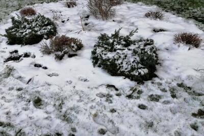 śnieg kujawsko-pomorskie